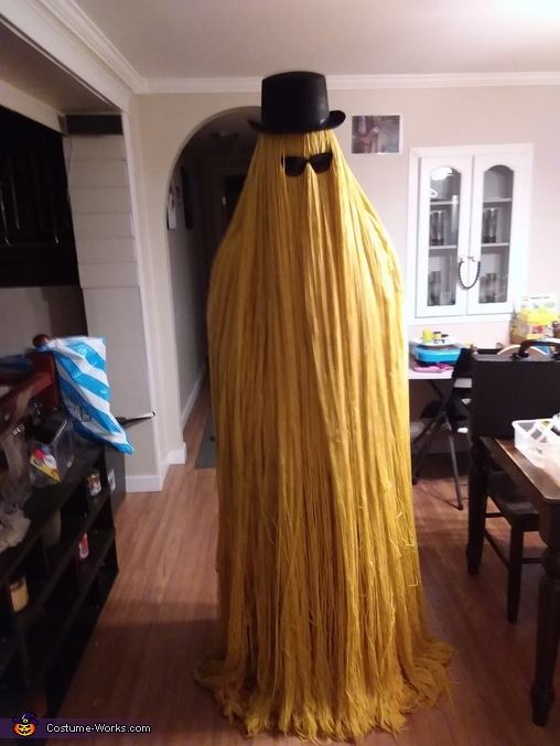 Homemade Cousin It Costume